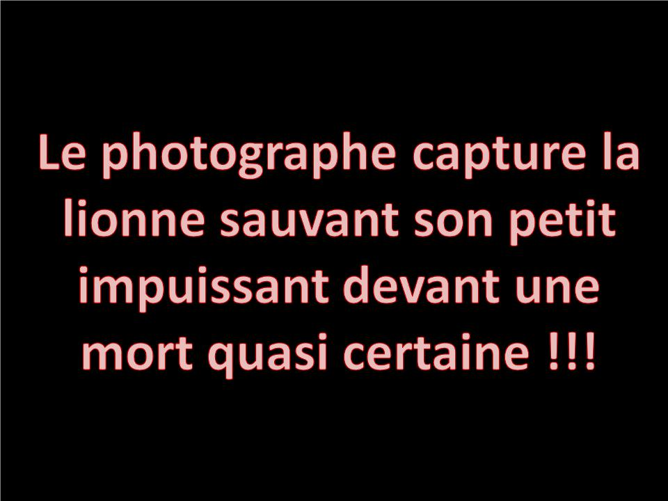 AMOUR_MATERNEL2231