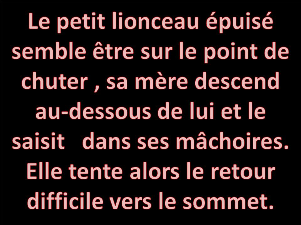 AMOUR_MATERNEL2238